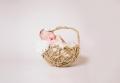 San Antonio TX Newborn Photographer Christine Naomi Photography feature